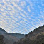 立秋ウロコ雲